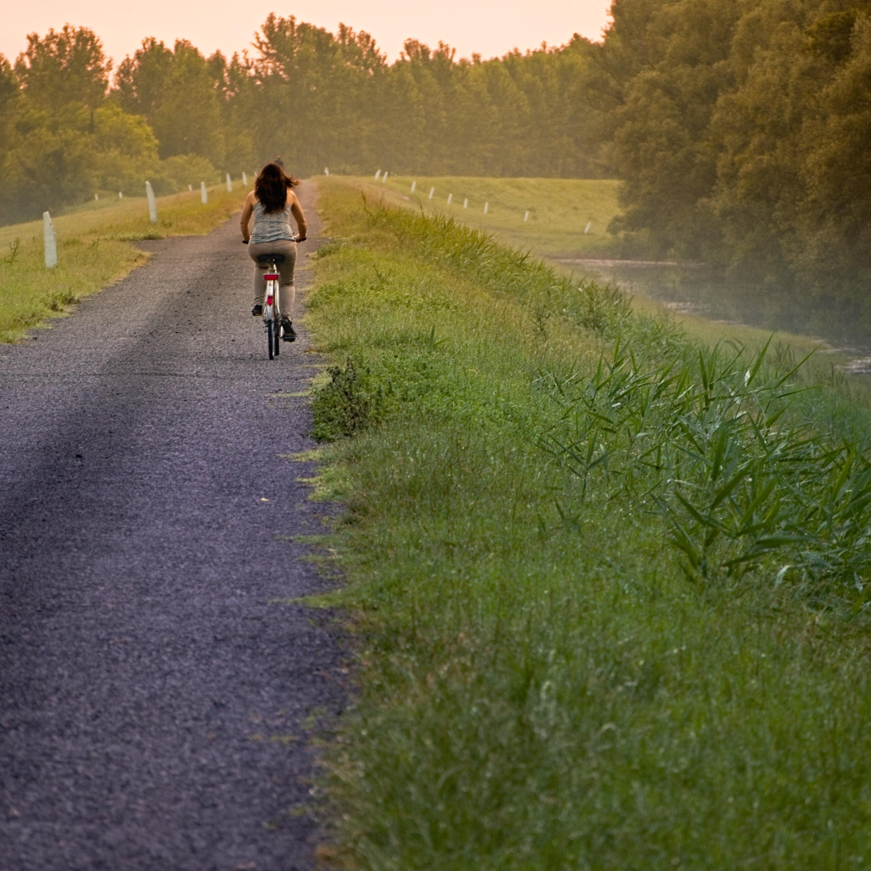 Rapariga andando de bicicleta no campo