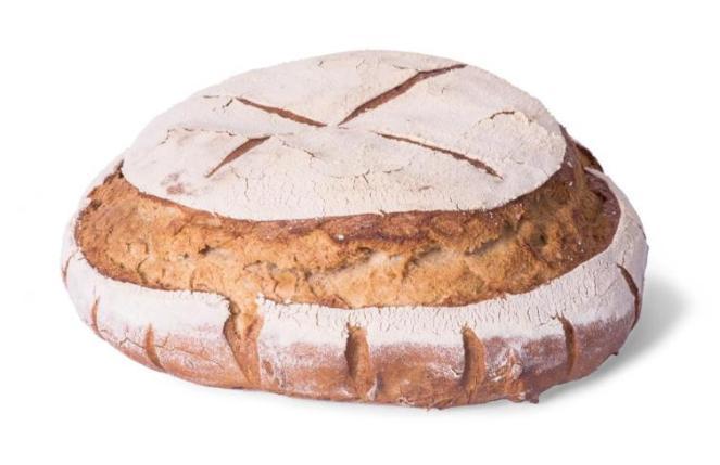 Várias receitas de pão