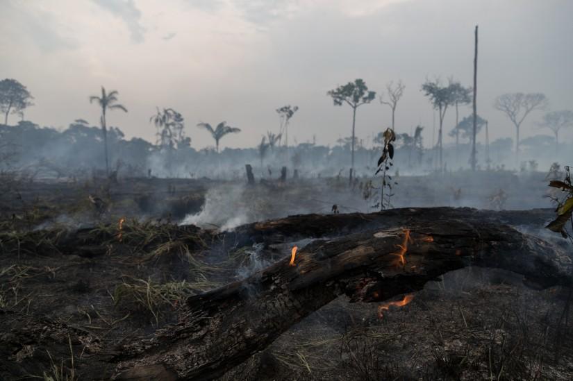 Queimadas próximas da rodovia Transamazônica BR-230 em 08 de agosto de 2020.(Foto Bruno Kelly/Amazônia Real)