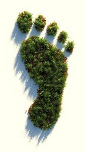 Pegada ecológica