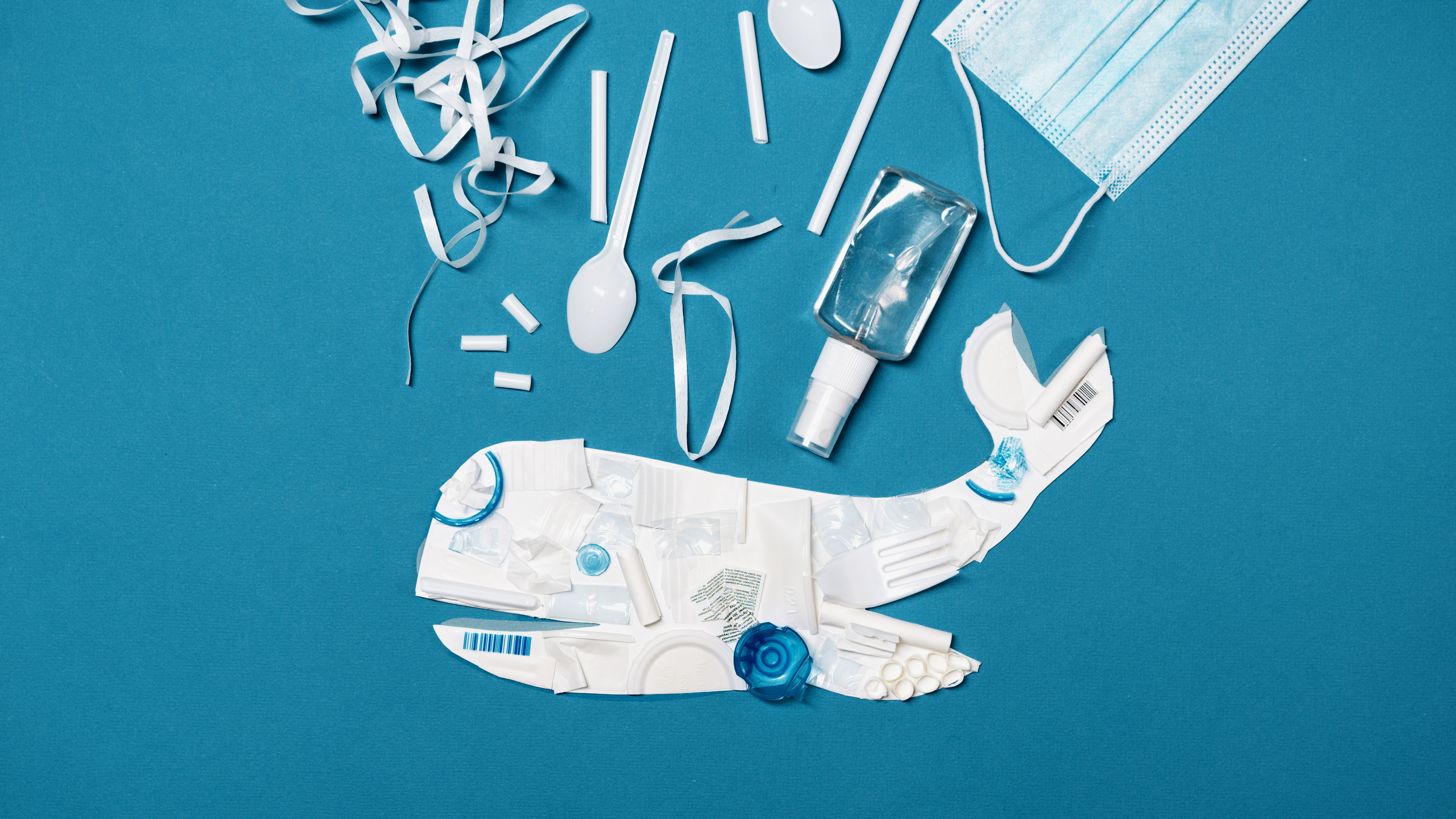 Lixo plástico nos Oceanos, fatal para as baleias