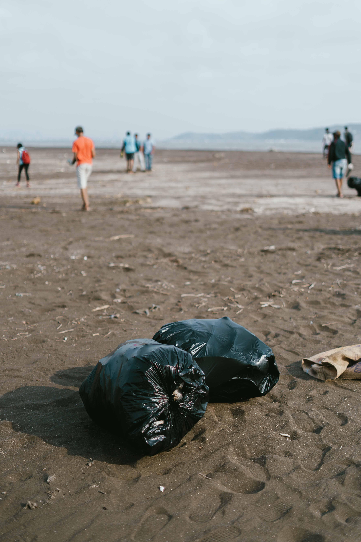 Limpeza voluntária das praias