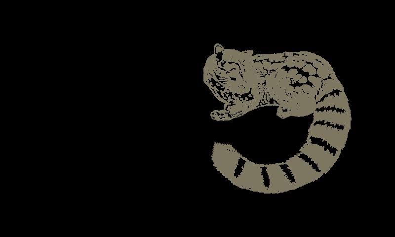 Logótipo Wilder RGB