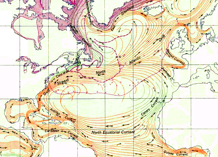 The North Atlantic Gyre